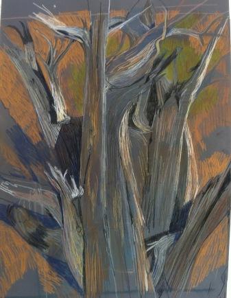 vertical juniper day 2.jpg